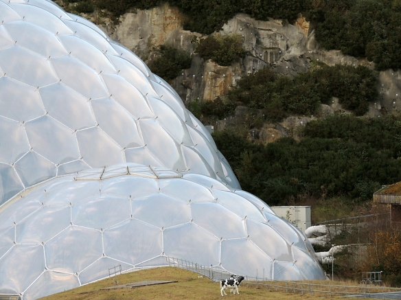 The iconic Eden domes